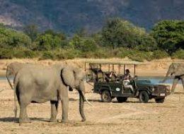 Kafue National Park/ Livingstone Victoria Falls